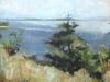 cape-cod-landscape