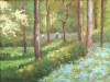 glade-neat-the-shakespear-garden