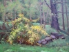 mary-anna-goetz_forsythia_oil-on-canvas_16-x-20